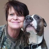 I have veterinary training and Im a dog sitter pet walking and pet grooming in Winter Haven Fl