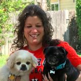 Experienced Pet Sitter & Dog Walker in The Woodlands