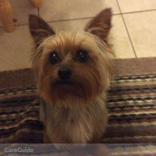 Pet Care Provider Nick Costantino's Profile Picture