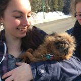For Hire: Caring Pet Sitter and Dog Walker in Prince George