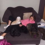 I have 3 dogs & a lot of experience w/ animals. HUGE animal lover! I will treat your pets as if they were my own. Macomb, MI.