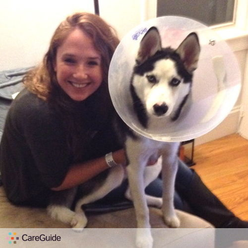 Pet Care Provider Meaghan Faneuf's Profile Picture