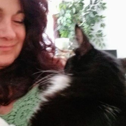 Pet Care Provider Mary P's Profile Picture