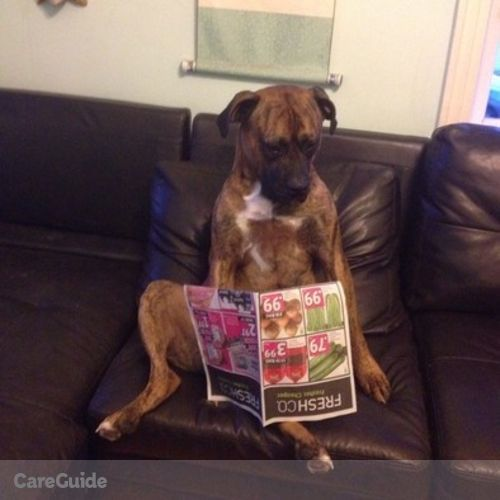 Pet Care Provider Jasmine Jasudavicius's Profile Picture