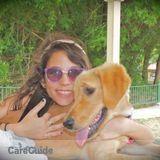 Dog Walker, Pet Sitter in Hato Rey