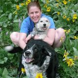 Animal lover ready to care for your animal family!