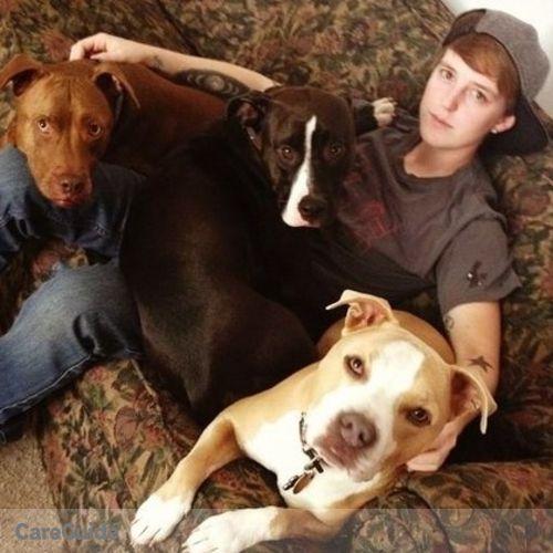Pet Care Provider Caitlin J's Profile Picture