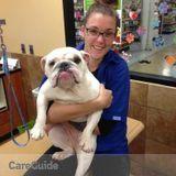 Loving Dog Walker And Sitter!