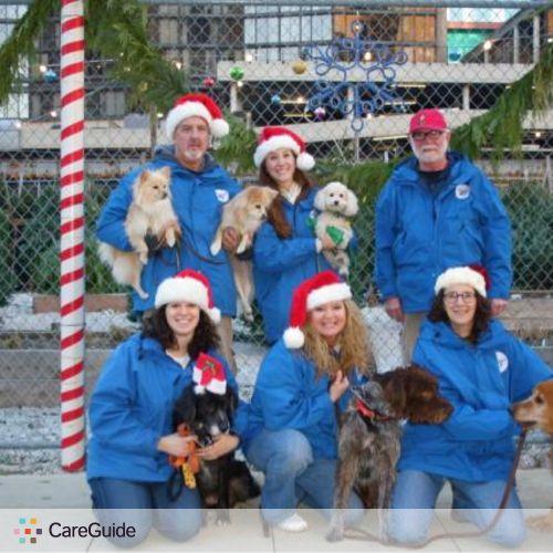 Pet Care Job Krista Toth's Profile Picture