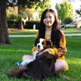 Experienced Pet Sitter in Pleasanton