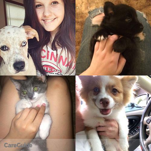 Pet Care Provider Katie B's Profile Picture