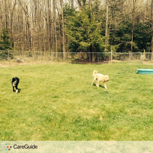 Pet Care Provider Deb H's Profile Picture