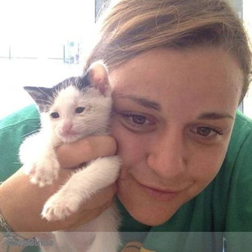 Pet Care Provider Allison Graber's Profile Picture