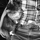 Pet Care Provider in Saskatoon