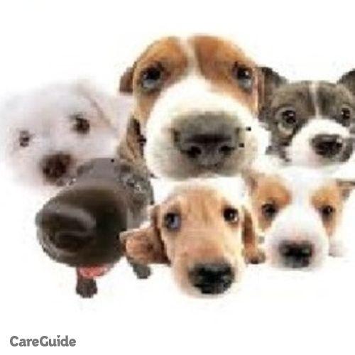Pet Care Provider Brian Webb's Profile Picture
