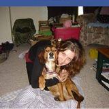 Responsible Trustworthy Pet sitter/ Dog Walker