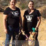 Dog Walker, Pet Sitter, Kennel in Simi Valley