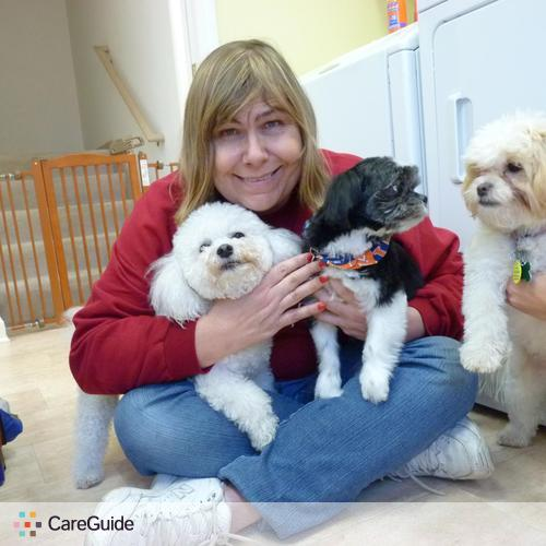 Pet Care Provider Tina Sievers's Profile Picture