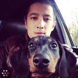 Dog Walker, Pet Sitter in Burbank