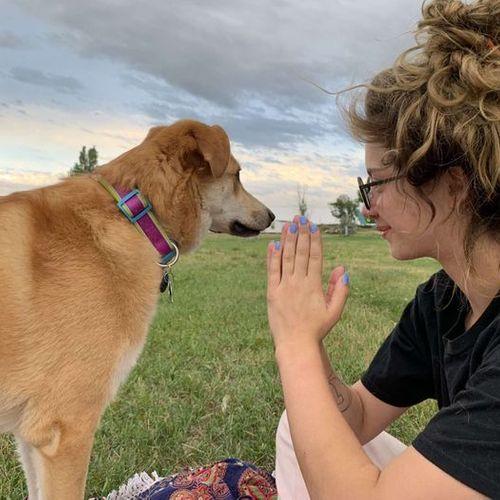 Pet Care Provider Brianna K's Profile Picture
