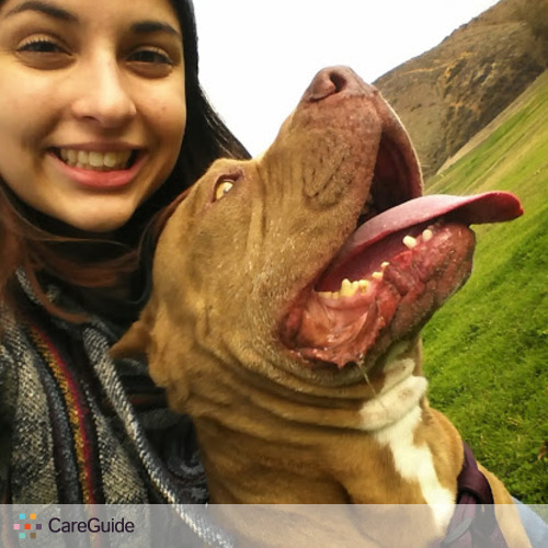 Pet Care Provider Rachael Gentile's Profile Picture