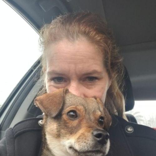 Pet Care Provider Jodi T's Profile Picture