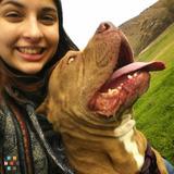 Dog Walker, Pet Sitter in San Bernardino