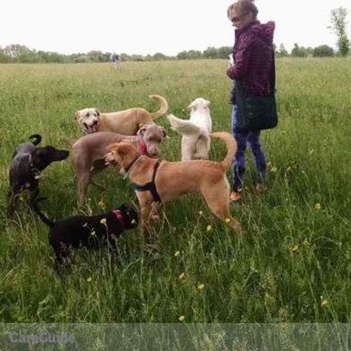 Pet Care Provider Erin Mueller's Profile Picture