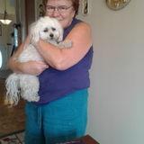 Dependable Pet Sitter,Flexible Hours