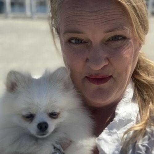 Pet Care Provider Angela P's Profile Picture