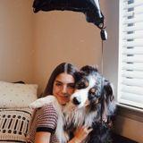 Pembroke Pines & Miramar Pet Sitter and Dog Walker