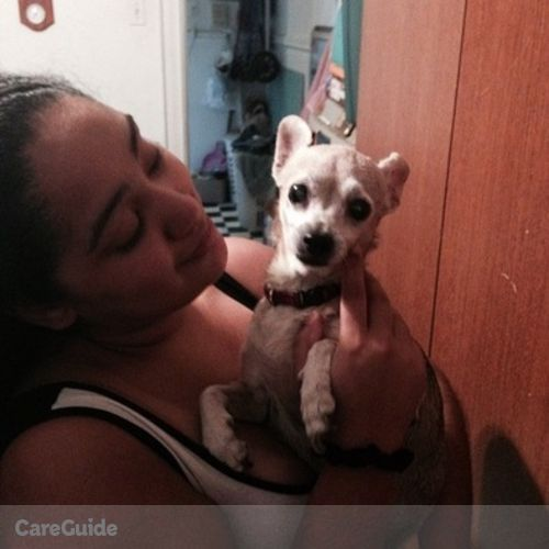 Pet Care Provider Marika Nieves's Profile Picture