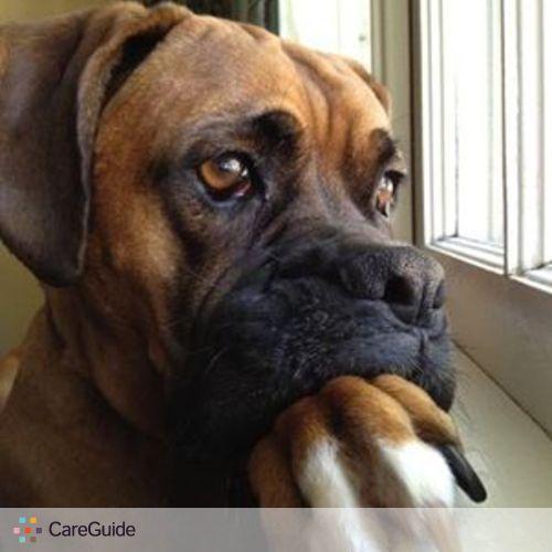 Pet Care Provider Tammie Foster's Profile Picture