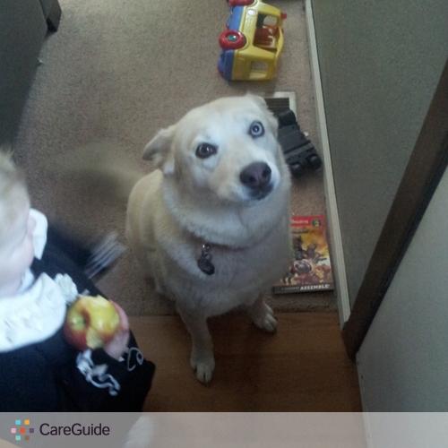 Pet Care Provider Robert Foster's Profile Picture