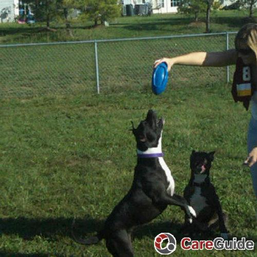 Pet Care Provider Amanda S's Profile Picture