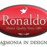 Ronaldo Painting & Renovations
