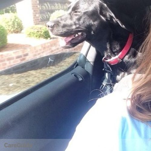Pet Care Job Hannah Jackson's Profile Picture