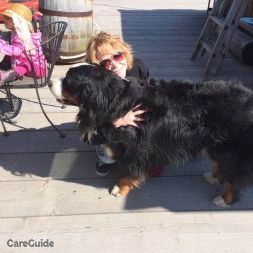 House Sitter Provider Ginny Winters's Profile Picture