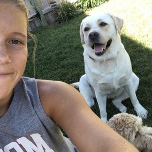 Pet Care Provider Amanda V's Profile Picture