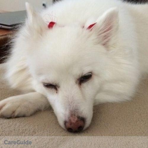 Pet Care Provider Katherine Titus's Profile Picture