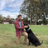 Lincolnton Pet Carer Interviewing For Job Opportunities