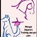 Morgan Bayards Training and Pet Care