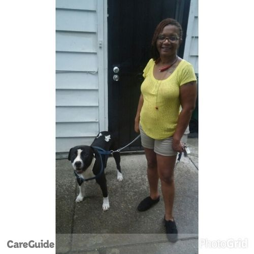 House Sitter Provider Kindall Boan's Profile Picture