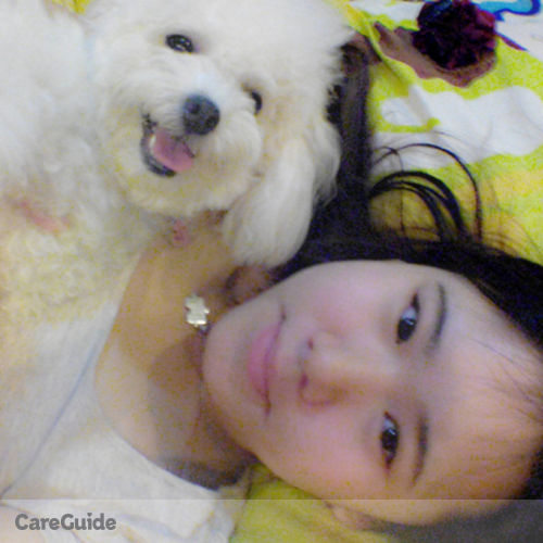 Pet Care Provider Maggie Pang's Profile Picture