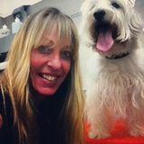 Professional Animal Caregiver