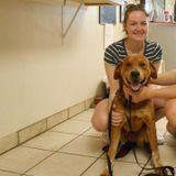 Caring Dog Walker in Felton, Delaware