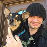 For Hire: Honest Pet Supervisor in Martinsburg