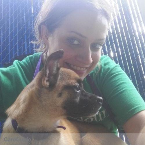 Pet Care Provider Alex Altman's Profile Picture