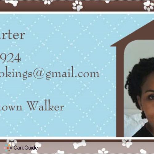 Pet Care Provider Dolly C's Profile Picture