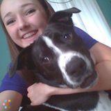 Dog Walker, Pet Sitter in Lacey